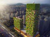 Imagem do dia: Construindo uma floresta vertical em Nanjing